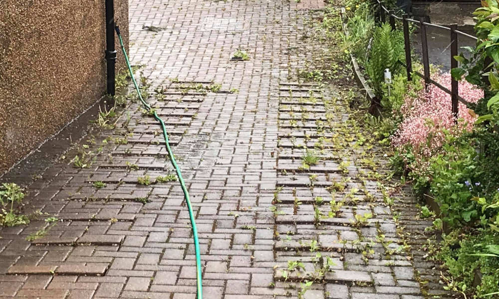 driveway cleaning company paisley